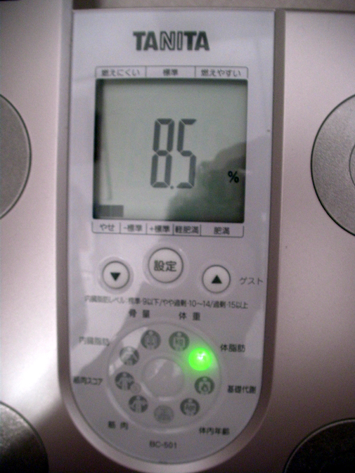 20100611_1